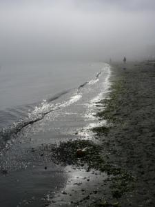 willows beach 047