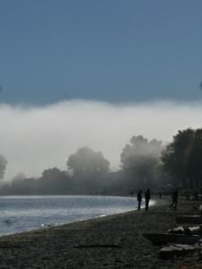 willows beach 051